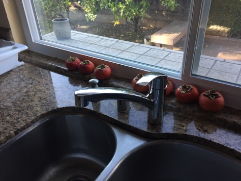 Our new kitchen faucet, with persimmons on the counter behind